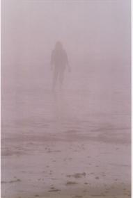 Gab dans brouillard a Grand Manan