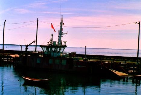 Traversier White island, NB
