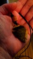 Flèche de coeur Micmaque