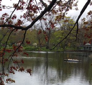 Crédit photo : Halifax Public Gardens